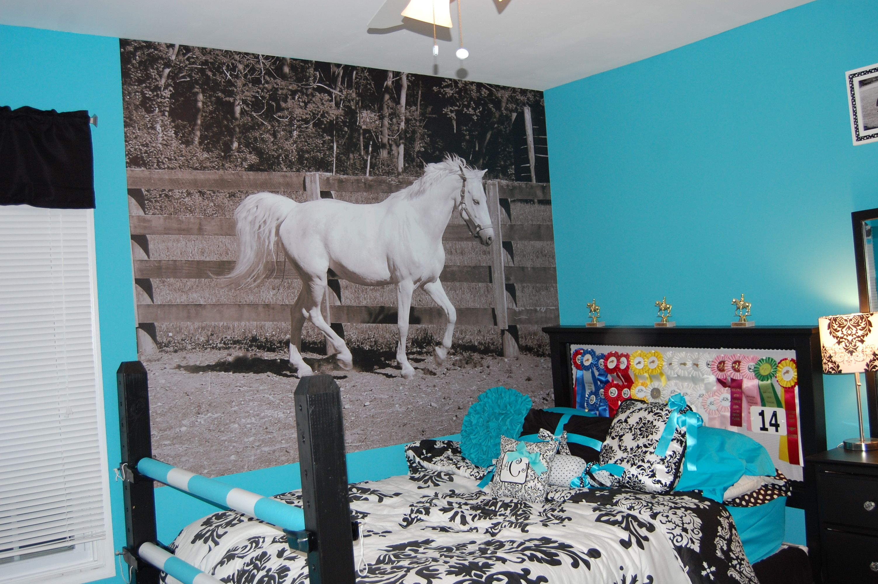 Picture Of My 13 Year Old Bedroom Horse Bedroom Horse
