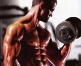 Erros mais comuns de quem pratica musculação - Blog do Erico