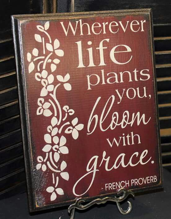 Bloom Where You Re Planted Flower Quotes Bloom Where Youre Planted Card Sentiments