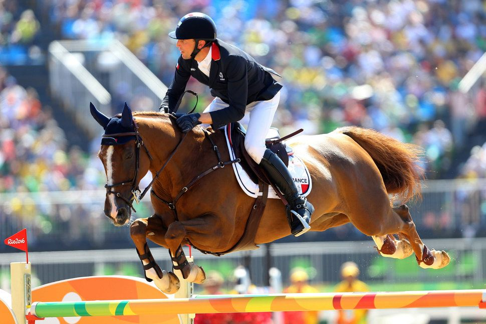 Flying Horses Are Real, And These Photos Prove It | Horses ...