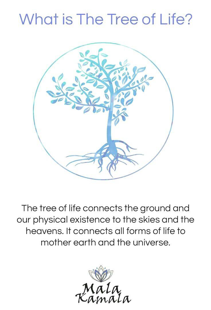The Tree Of Life Buddhism Wisdom Pinterest Meditation
