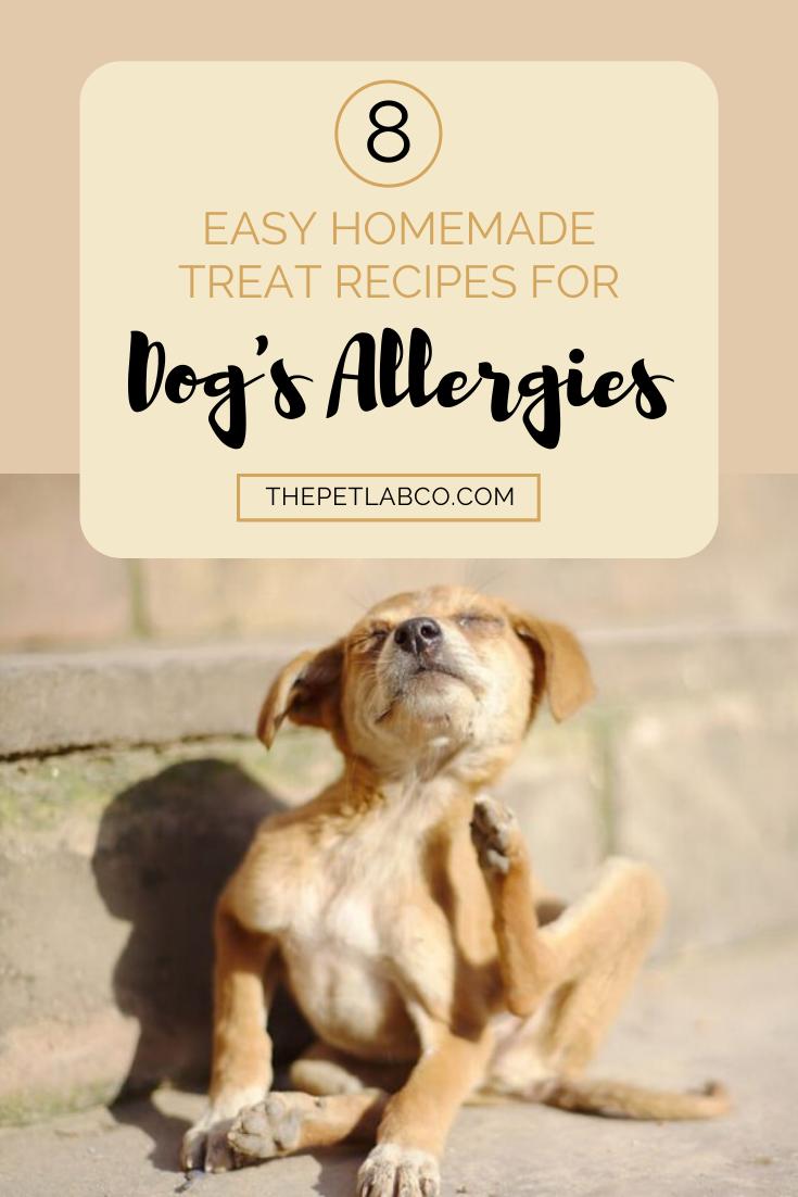 8 Allergen Free Dog Treat Recipes Dog Allergies Dog Allergies Relief Dog Allergies Remedies