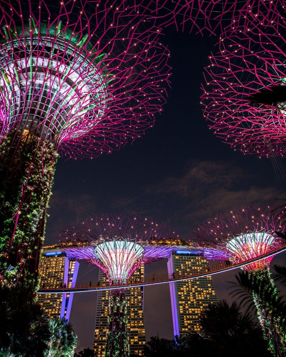 211c9875faffc537461c56e9c2521fc9 - Guide To Gardens By The Bay