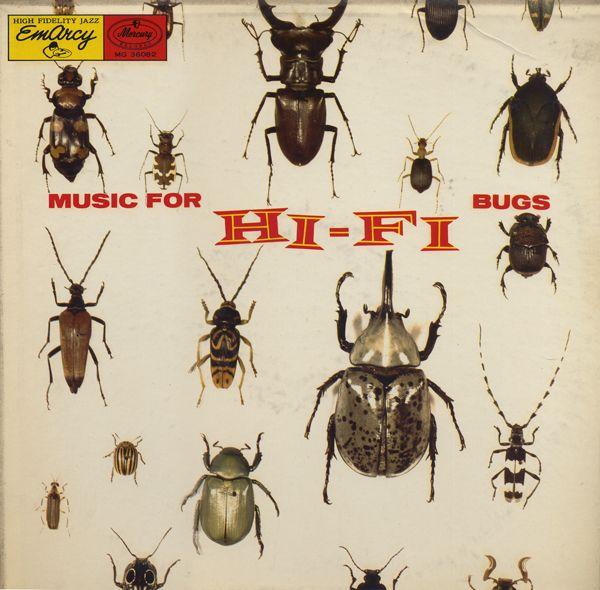 Hi fi bugs