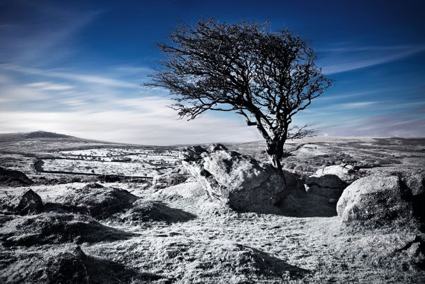 Your Gopro Can Now Stream Directly To Periscope Winter Landscape Landscape Photography Landscape