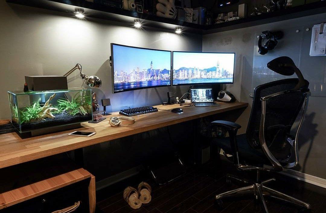 Desk And Terrarium Home Office Setup Computer Desk Setup