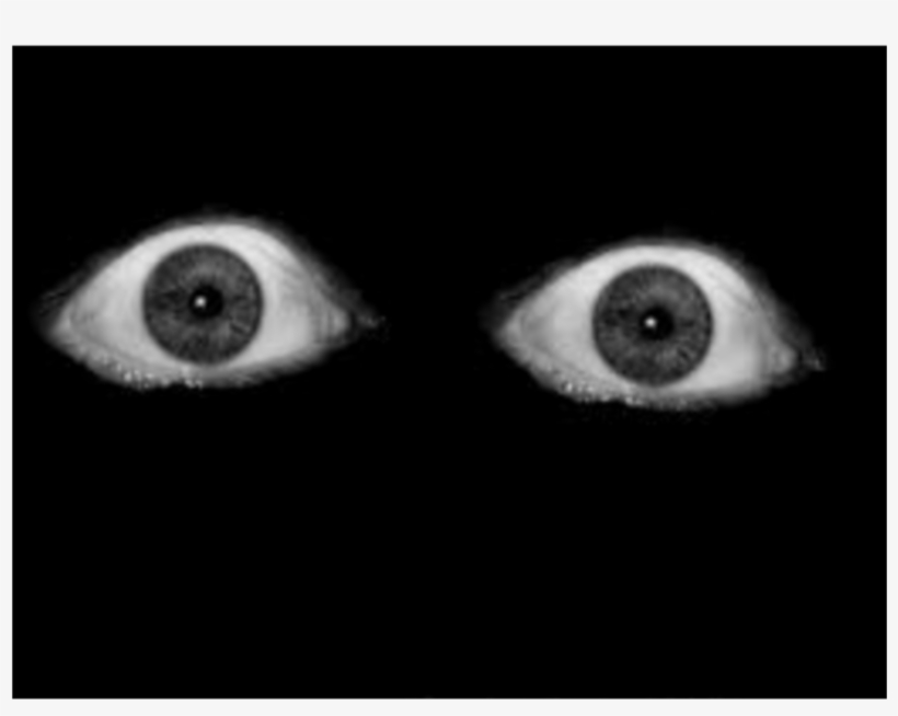 Download Creepy Horror Eye Eyes Dark Grunge Aesthetic Remixit Dark Art Png Image For Free Search More Creative Png Res Creepy Horror Dark Grunge Creepy Eyes