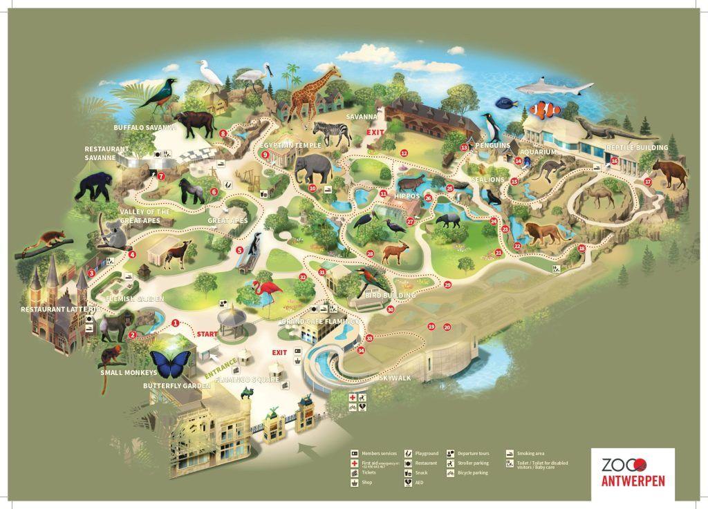 Antwerpen Zoo Map Guide Maps Online Antwerpen Zoo Map Zoo Map Zoo Project Zoo