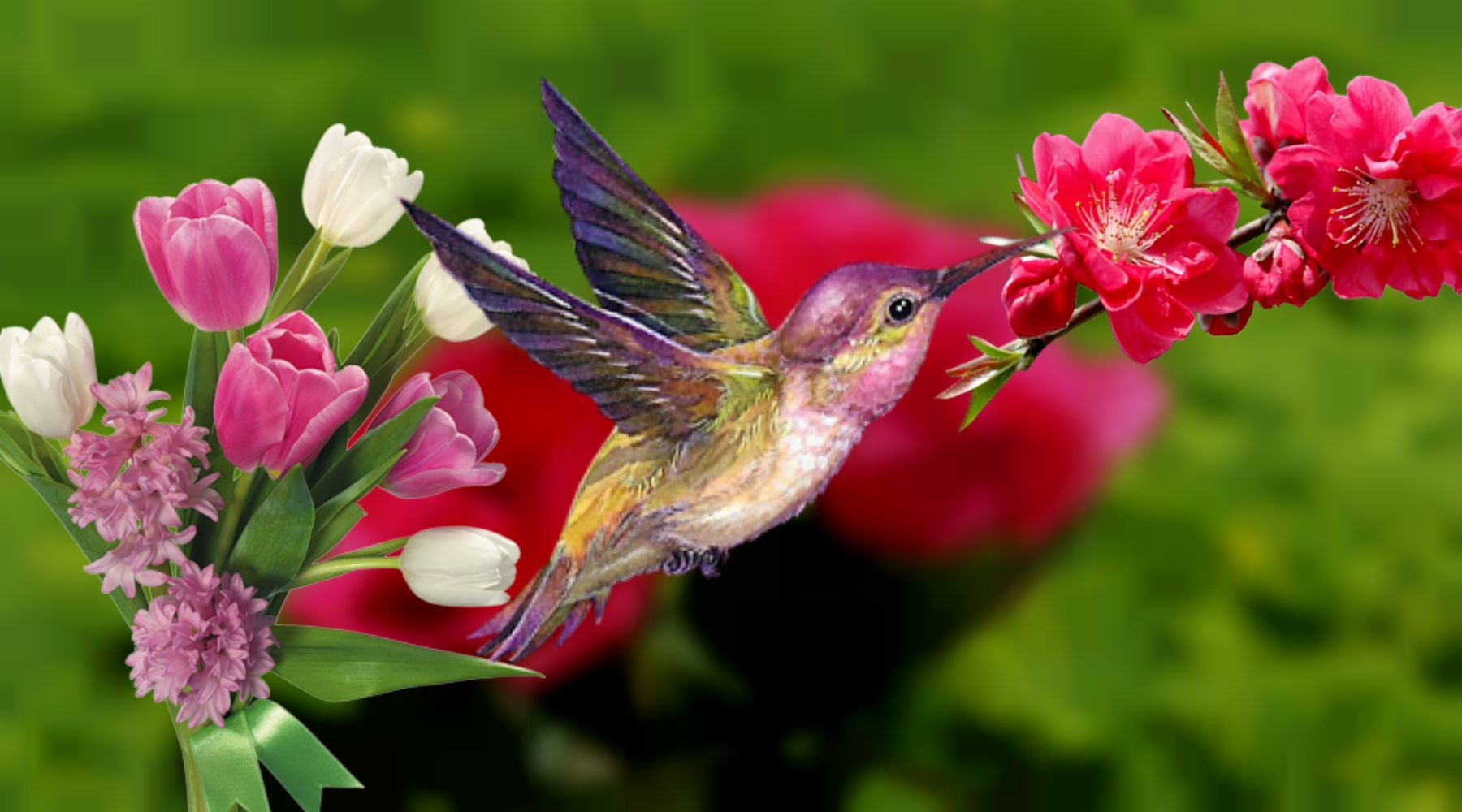 Spring Flowers And Birds Hd 1080P 12 HD Wallpapers