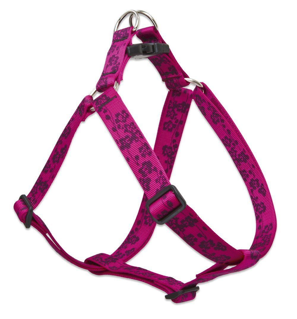 Lupine 1 Inch Plum Blossom Step In Dog Harness -- Click image to review more details.