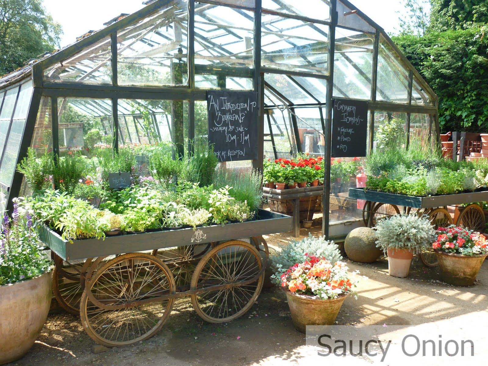 Petersham Nurseries Restaurant London With Images Garden