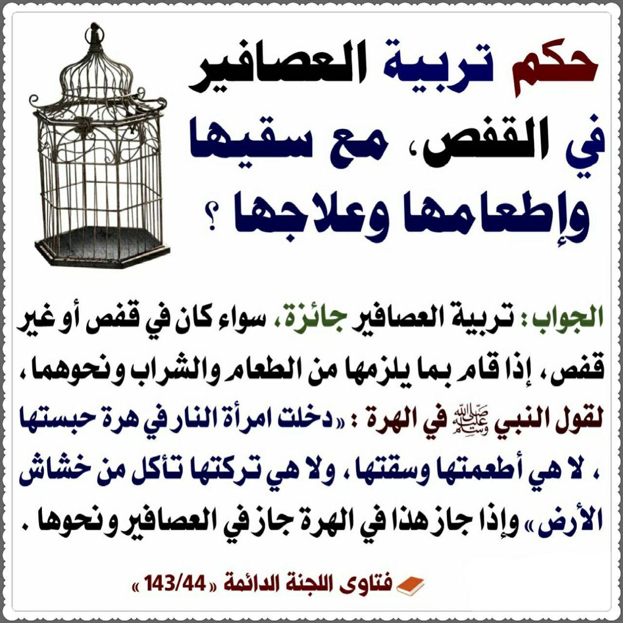 Pin By الأثر الجميل On فتاوى Islamic Teachings Fake Girls Islam