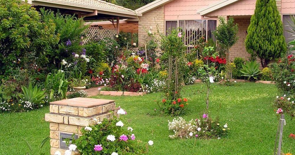 Tipos de céspedes según las características de nuestro jardín