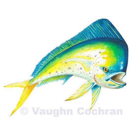 how to make mahi mahi fish