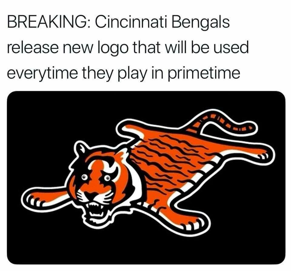 Bengals Suck