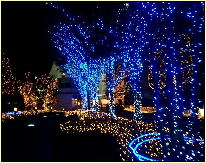 Outside Led Christmas Lights With Others Blue Led Outdoor Chr Christmas Lights Outside Outdoor Christmas Decorations Lights Battery Operated Christmas Lights