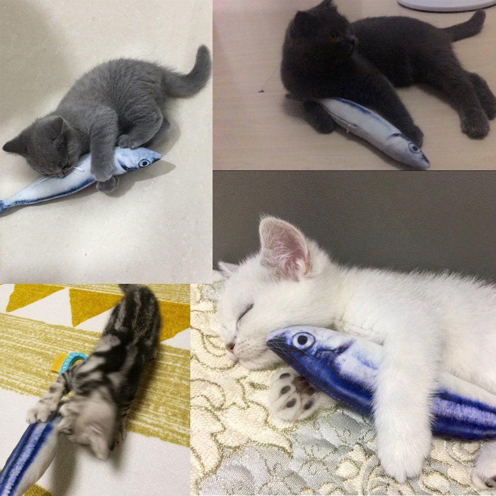 Pin On Cats Ideas