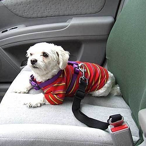 Pet Dog Cat Safety Seatbelt for Car Vehicle Seat Belt Harness Lead Adjustable *** Click image to review more details.