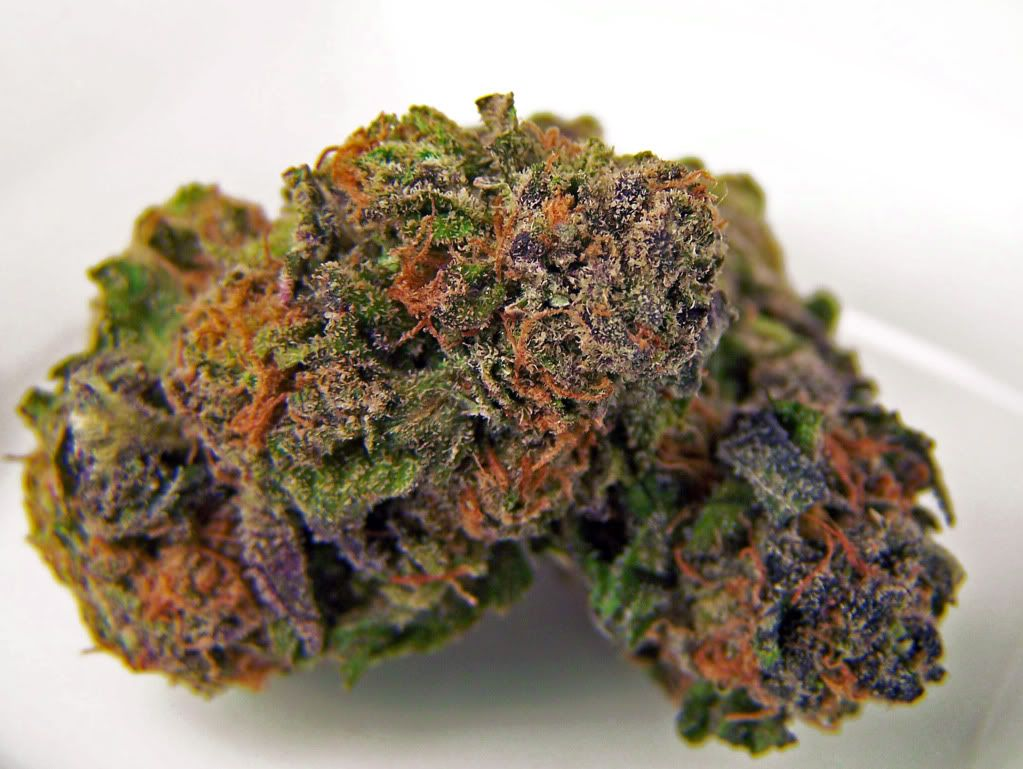 Purple nugs | Weed | Cannabis, Weed shop, Weed