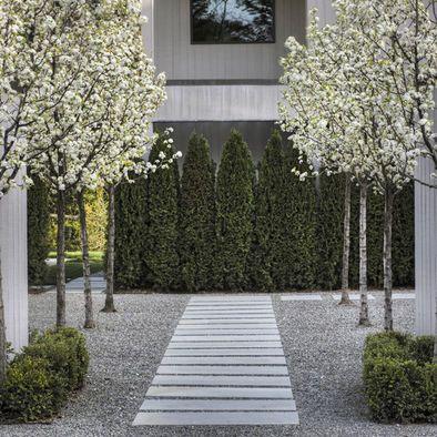 haus hauseingang eingang vorgarten stufen b ume b sche baum busch symetrisch sch ne. Black Bedroom Furniture Sets. Home Design Ideas