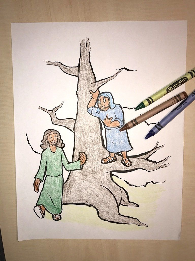Zacchaeus Coloring Page Bible Coloring Pages Pinterest