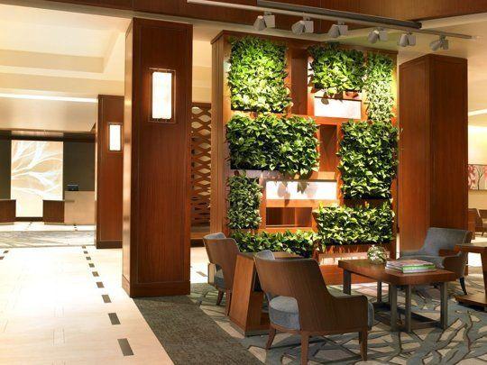 consejos para el crecimiento y la de su propio jardn vertical de interior apartment
