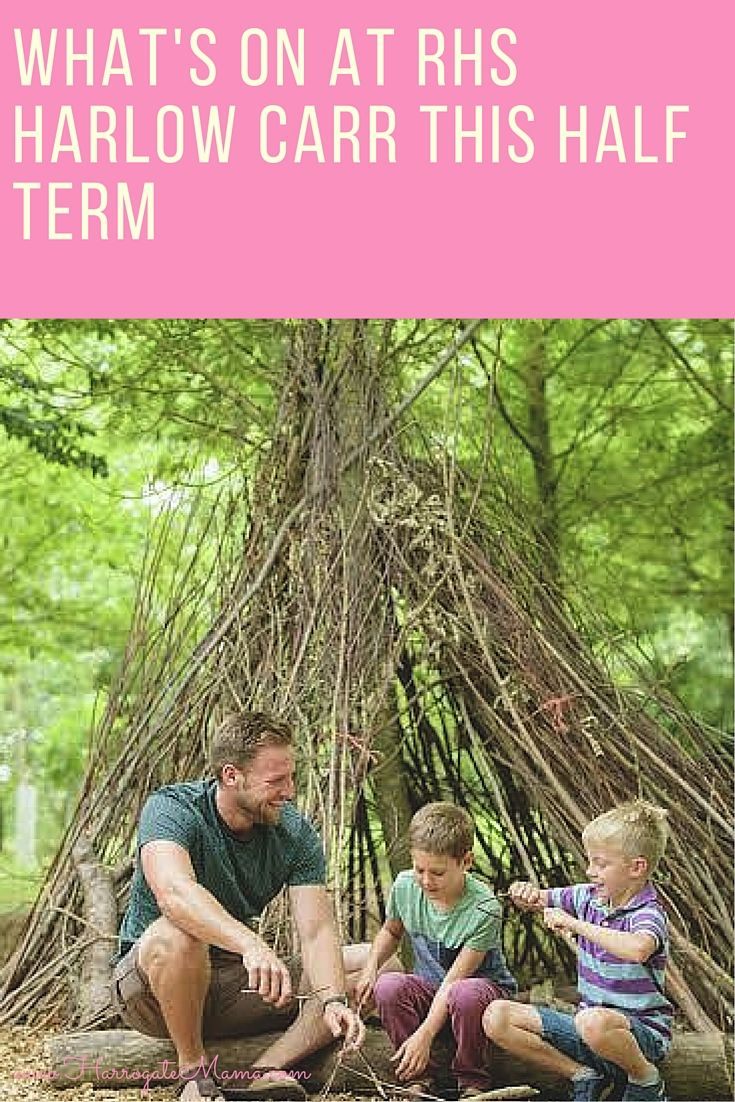 Sharing all the outdoor activities for kids to do in Harrogate up at RHS Harlow Carr for half term