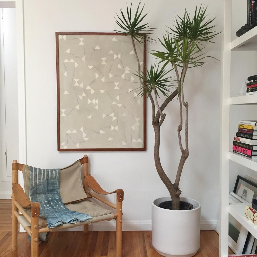 Kinda obsessing over this little corner in our new house. This chair was supposed to go in my new office, but I think it belongs right here next to my Un-styled bookshelves, stacks of leaning art, and my crazy tree... In other news IT's Friday!!