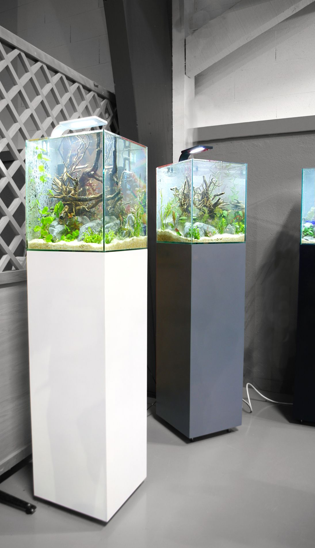 luxus aquarium colonne id es de conception de table basse. Black Bedroom Furniture Sets. Home Design Ideas
