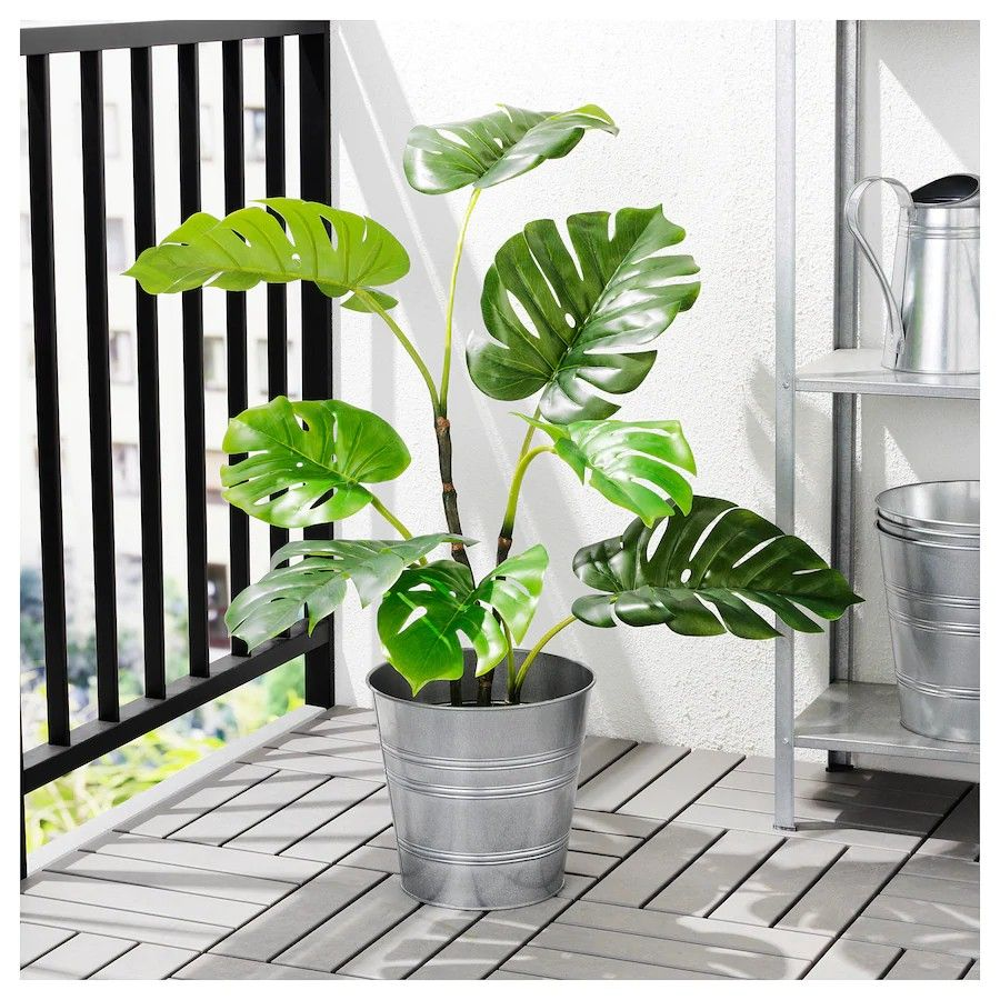 Fejka Artificial Potted Plant In Outdoor Monstera 19 Cm Indoor Plants Hanging Plants Plants