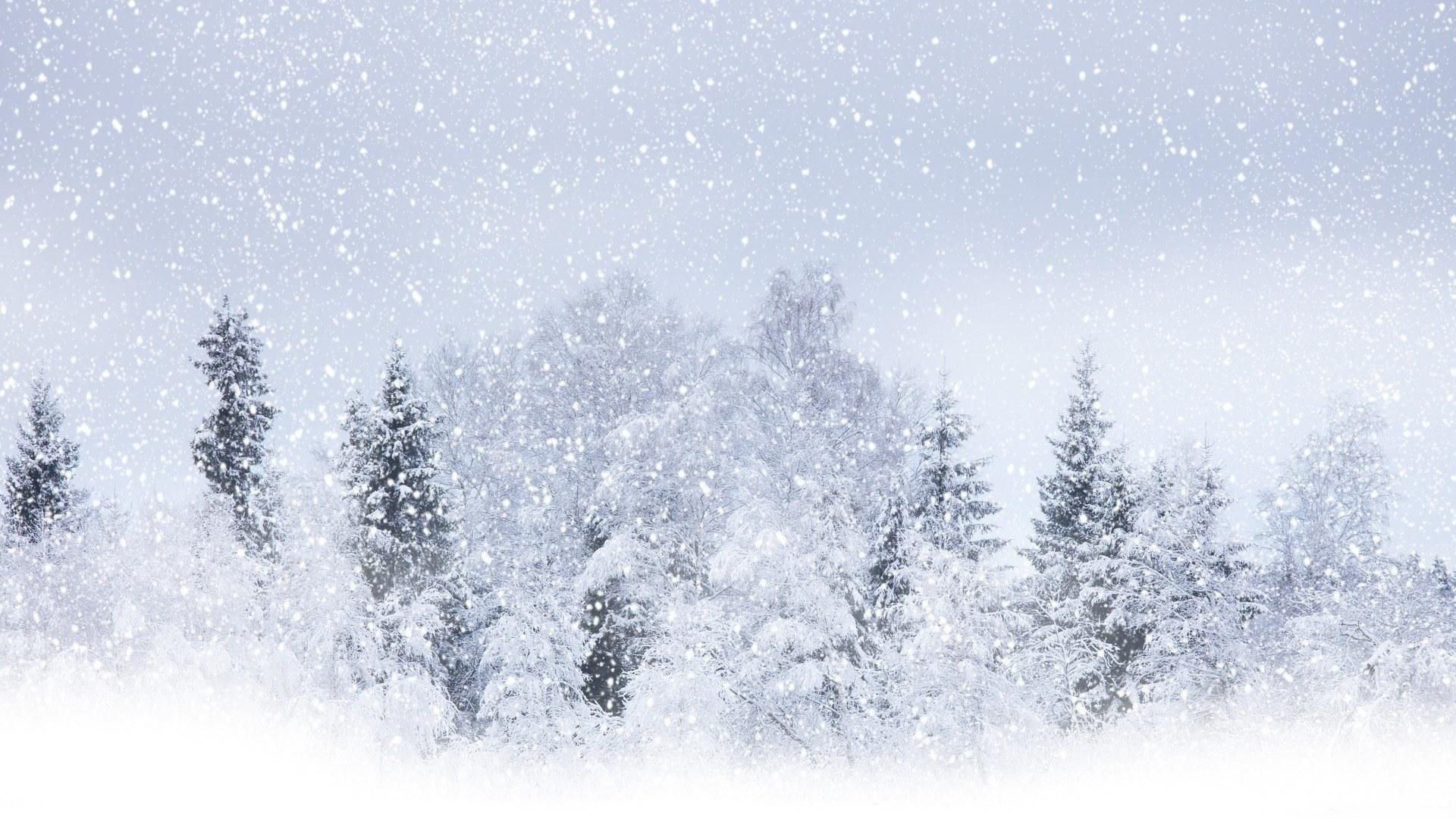 Snowfall Live Wallpaper For Windows 10