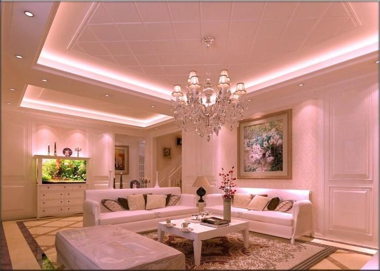 Nice Ceiling Design For Living Room Photo - Living Room Designs ...