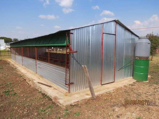 Chicken House For Sale Complete Pretoria East Image 2 Chicken