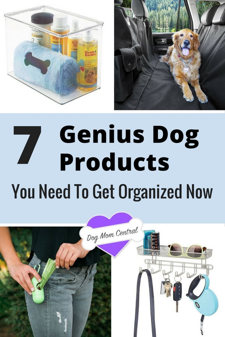 These seven brilliant buys can instantly help you get that much more organized and feel a little more control in your life when you're a dog mom.