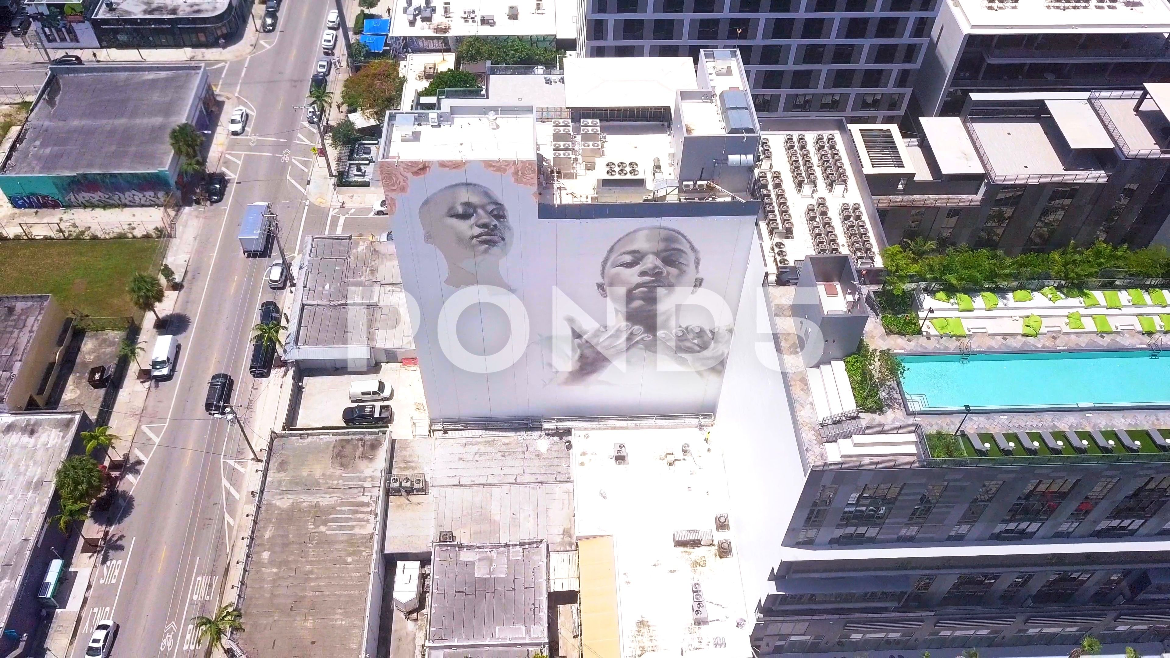 Miami View From The Drone Woodward Park Street Art Stock Footage Ad Drone Woodward Miami View Street Art Woodward Park Park