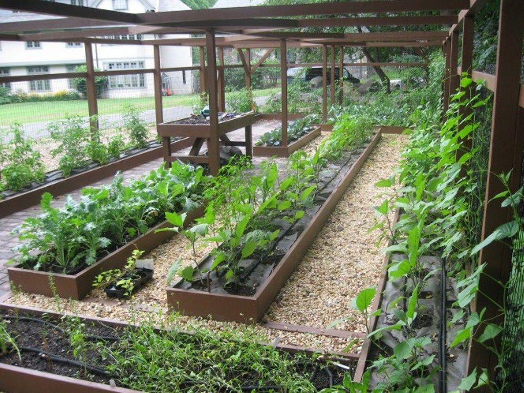 Small Backyard Vegetable Garden Ideas | Small vegetable ...