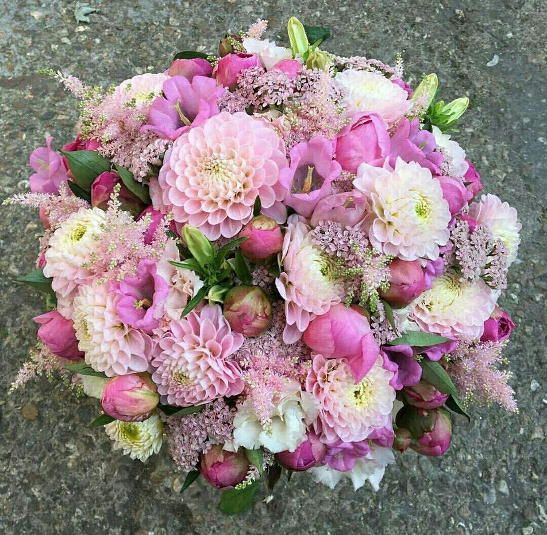 Pin by liza dinata on flower pinterest flower