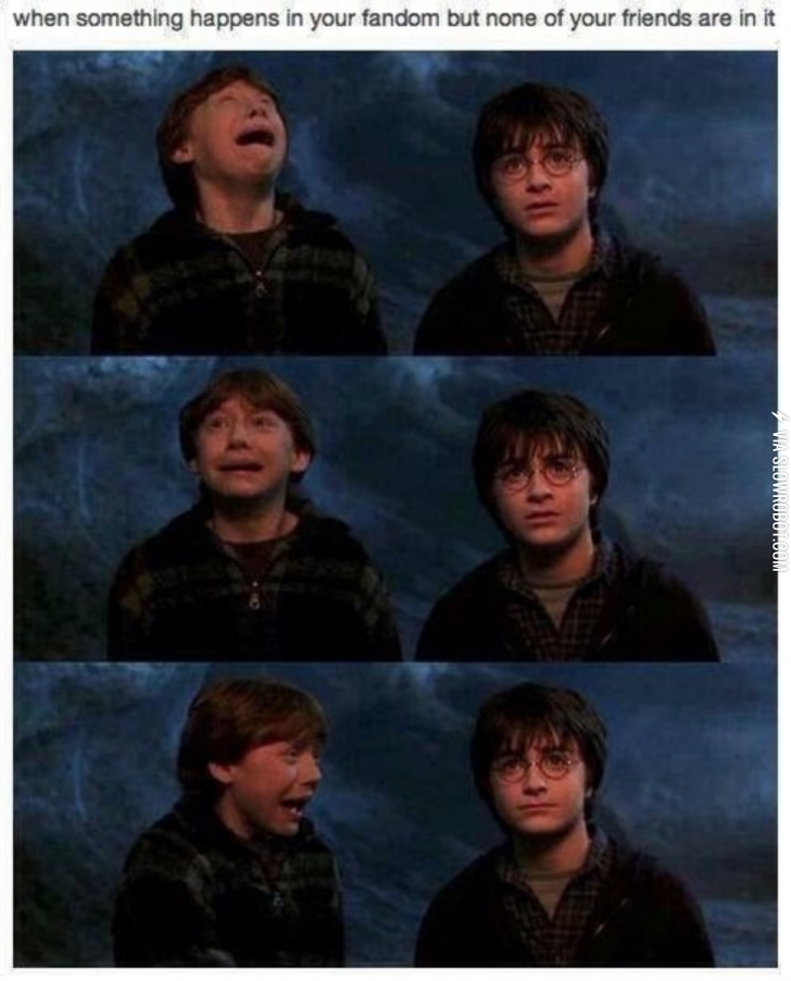 They Just Never Understand Fangirl Harry Potter Funny Funny