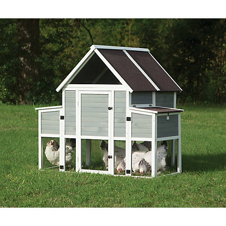 Precision Roosting Ladder Chicken Coop 40121d At Tractor Supply Co Building A Chicken Coop Chicken Coop Best Chicken Coop