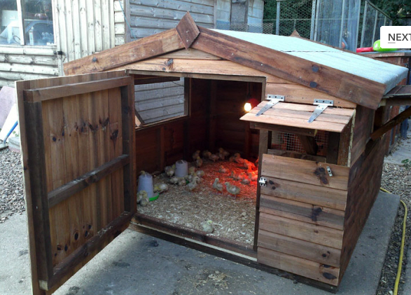 Shed King Liverpool Chicken Coop Garden Sheds In Liverpool