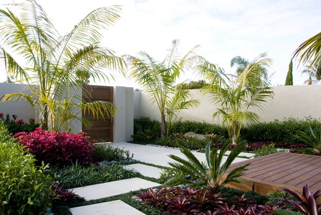 Auckland garden design fest garden design pinterest for Tropical courtyard garden design