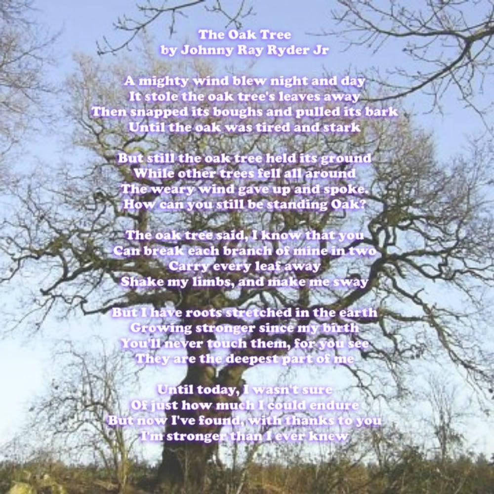 The Oak Tree By Johnny Ray Ryder Jr With Images Made In