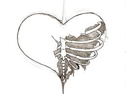 Heart With Ribs Ink Drawings Beautiful Sketches Sketches
