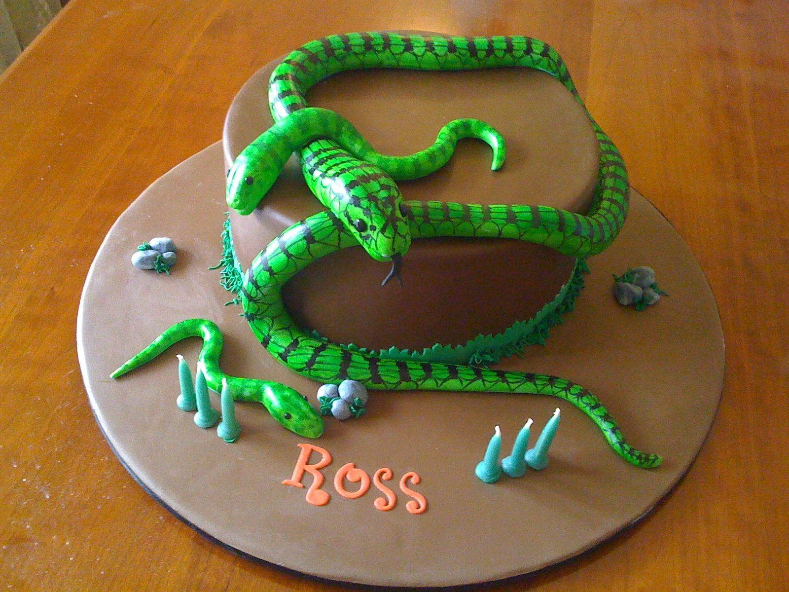 Remarkable Boomslang Snake Birthday Cake With Images Snake Birthday 28Th Funny Birthday Cards Online Aboleapandamsfinfo