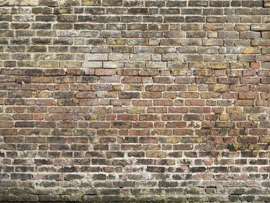 Best Murals Of Old Bricks By Textures 3000Mm X 2400Mm Shop 400 x 300