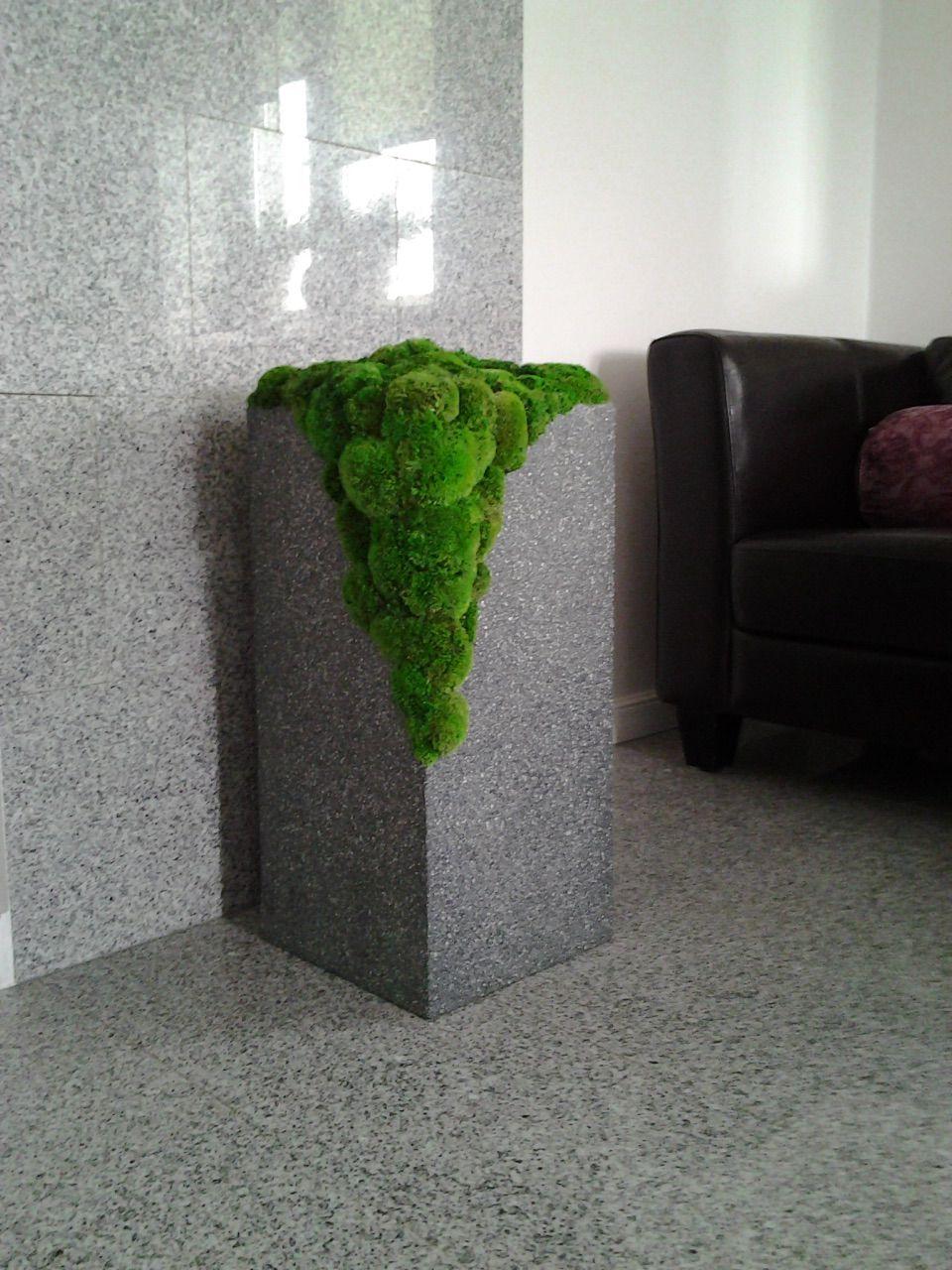 Idealna dekoracja do łazienki mech stabilizowany