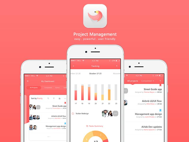 Behance   Project Management App Samples
