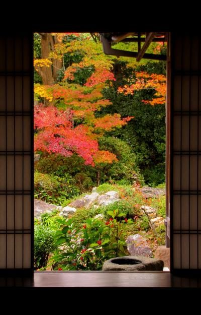 京都鷹峰の紅葉 (京都 | Japanese garden design, Garden design ...