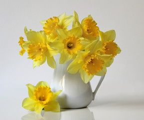 Bouquet Of Yellow Daffodils Flowers In A Vase Floral Still Life With Bouquet Of Yellow Narcissus Flowers In A Flowers Photography Flower Pots Narcissus Flower