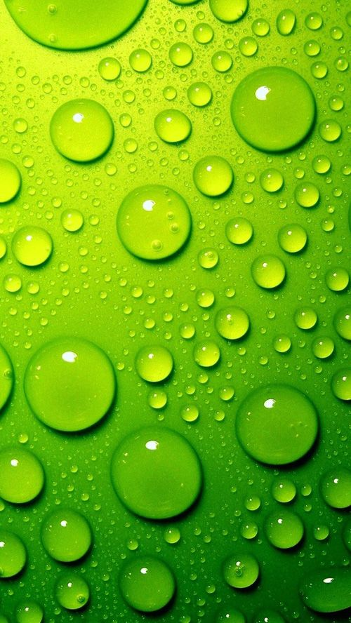 30 Fresh And Cool Iphone 5 Wallpapers Green Wallpaper